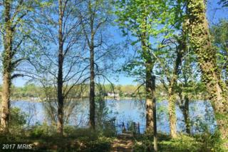 1914 Hidden Point Road, Annapolis, MD 21409 (#AA9926003) :: Pearson Smith Realty