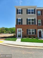 7105 River Birch Drive, Hanover, MD 21076 (#AA9929977) :: Pearson Smith Realty