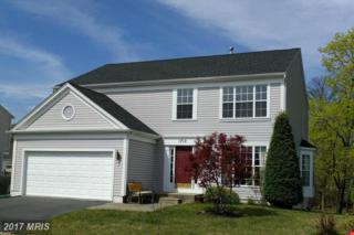1712 Crossbay Court, Severn, MD 21144 (#AA9935784) :: Pearson Smith Realty