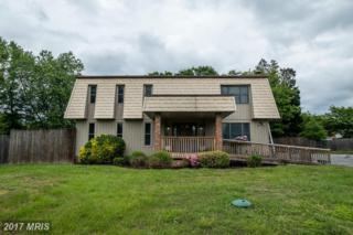 2704 Saffron Place, Edgewater, MD 21037 (#AA9939609) :: Pearson Smith Realty