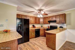 977 9TH Street, Pasadena, MD 21122 (#AA9951944) :: Pearson Smith Realty