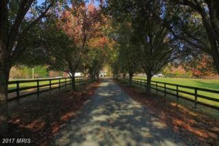 6556 Gordonsville Road, Gordonsville, VA 22942 (#AB9830759) :: LoCoMusings
