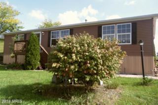 60 Broadwing Drive, Hanover, PA 17331 (#AD9787475) :: Pearson Smith Realty