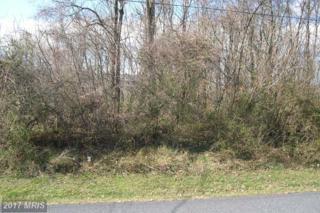3 Deep Powder Trail, Fairfield, PA 17320 (#AD9875815) :: LoCoMusings
