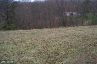 11415 Oak Tree Ridge Road, Cumberland, MD 21502 (#AL9606351) :: LoCoMusings