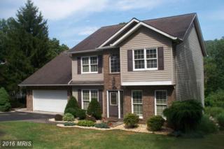13004 Mallard Street, Cumberland, MD 21502 (#AL9724281) :: Pearson Smith Realty