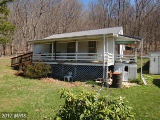17805 Morgan Trail Lane NE, Flintstone, MD 21530 (#AL9747041) :: Pearson Smith Realty