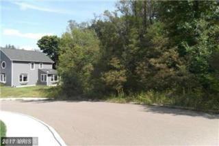 Braddock Heights, Frostburg, MD 21532 (#AL9827969) :: Pearson Smith Realty