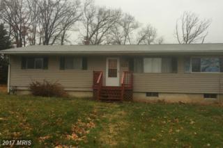 12122 Lotus Avenue, Cumberland, MD 21502 (#AL9828561) :: Pearson Smith Realty