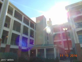 1100 Quaker Hill Drive #321, Alexandria, VA 22314 (#AX9815024) :: LoCoMusings