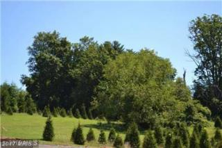 LOT Westminster Pike #2, Reisterstown, MD 21136 (#BC9675404) :: Pearson Smith Realty