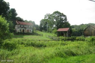 Evna Road, Parkton, MD 21120 (#BC9765760) :: Pearson Smith Realty