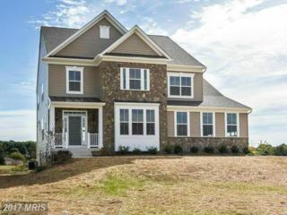 12206-C Fischer Court, Kingsville, MD 21087 (#BC9785079) :: Pearson Smith Realty