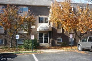 12009 Tarragon Road B, Reisterstown, MD 21136 (#BC9812806) :: Pearson Smith Realty