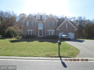 2229 Siena Way, Woodstock, MD 21163 (#BC9815658) :: Pearson Smith Realty