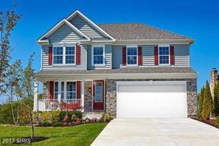Touchard Drive, Catonsville, MD 21228 (#BC9821267) :: Pearson Smith Realty