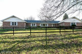 3126 Hernwood Road, Woodstock, MD 21163 (#BC9822754) :: Pearson Smith Realty