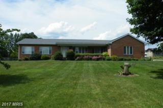 2606 Beckleysville Road, Freeland, MD 21053 (#BC9824391) :: Pearson Smith Realty