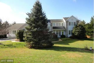 320 Delight Meadows Road, Reisterstown, MD 21136 (#BC9826498) :: Pearson Smith Realty