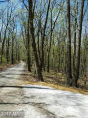 Duncan Hill Road, Sparks, MD 21152 (#BC9839881) :: Pearson Smith Realty