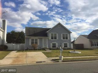 7119 Olivia Road, Baltimore, MD 21220 (#BC9850752) :: Pearson Smith Realty
