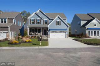 11517 Autumn Terrace Drive, White Marsh, MD 21162 (#BC9859037) :: LoCoMusings