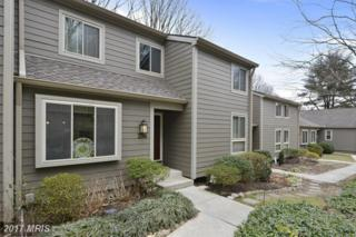 206 Beech View Court, Baltimore, MD 21286 (#BC9863167) :: LoCoMusings