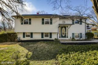 206 Timber Grove Road, Reisterstown, MD 21136 (#BC9874871) :: LoCoMusings