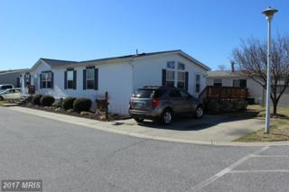 3208 Jonquil Lane, Middle River, MD 21220 (#BC9878761) :: LoCoMusings