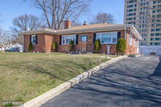 117 Marlyn Avenue N, Baltimore, MD 21221 (#BC9879721) :: LoCoMusings