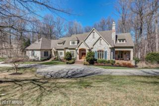 1210 Scotts Knoll Court, Lutherville Timonium, MD 21093 (#BC9899826) :: Pearson Smith Realty