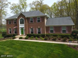929 Zenith Drive, Freeland, MD 21053 (#BC9901437) :: Pearson Smith Realty