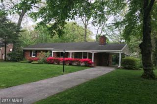 213 Medbury Road, Lutherville Timonium, MD 21093 (#BC9906963) :: Pearson Smith Realty