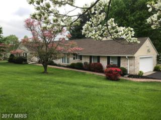 6500 Deer Park Road, Reisterstown, MD 21136 (#BC9918609) :: Pearson Smith Realty
