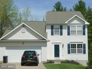 114 Summer Woods Way, Owings Mills, MD 21117 (#BC9927015) :: Pearson Smith Realty
