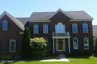 306 Stable View Court, Parkton, MD 21120 (#BC9930101) :: Pearson Smith Realty