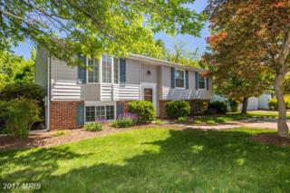 1101 Kingsbury Road, Owings Mills, MD 21117 (#BC9930851) :: Pearson Smith Realty