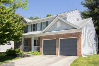 6 Romney Court, Owings Mills, MD 21117 (#BC9944080) :: Pearson Smith Realty