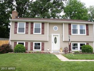17 Freedom Court, Baltimore, MD 21220 (#BC9958618) :: Pearson Smith Realty