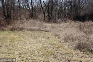 Evitts Creek Road, Bedford, PA 15522 (#BD8578830) :: LoCoMusings