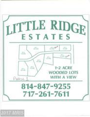 Ridge Way Drive, Everett, PA 15537 (#BD9627309) :: Pearson Smith Realty