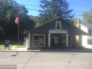 1384 Main Street, Six Mile Run, PA 16679 (#BD9777839) :: Pearson Smith Realty