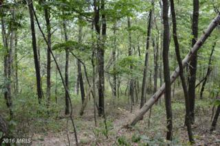 LOT 14 Pine Ridge Road, Clearville, PA 15535 (#BD9784948) :: Pearson Smith Realty