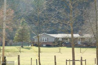 2207 Cooks Mill Road, Hyndman, PA 15545 (#BD9874875) :: LoCoMusings