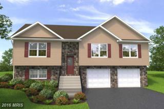 0 Shuykill Drive, Martinsburg, WV 25405 (#BE9595630) :: Pearson Smith Realty