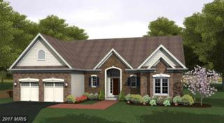 LOT 2 Eiderdown Drive, Martinsburg, WV 25404 (#BE9764326) :: Pearson Smith Realty