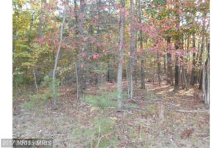 Lot 35 Round Top Estates, Gerrardstown, WV 25420 (#BE9790851) :: Pearson Smith Realty