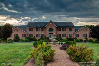 245 Turquoise Drive, Hedgesville, WV 25427 (#BE9794962) :: LoCoMusings