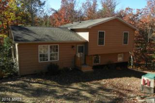 291 Tall Pine Lane, Gerrardstown, WV 25420 (#BE9804569) :: Pearson Smith Realty