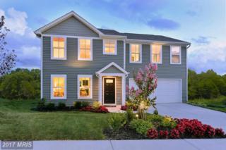 1 Shrewsbury Drive, Martinsburg, WV 25403 (#BE9813674) :: Pearson Smith Realty